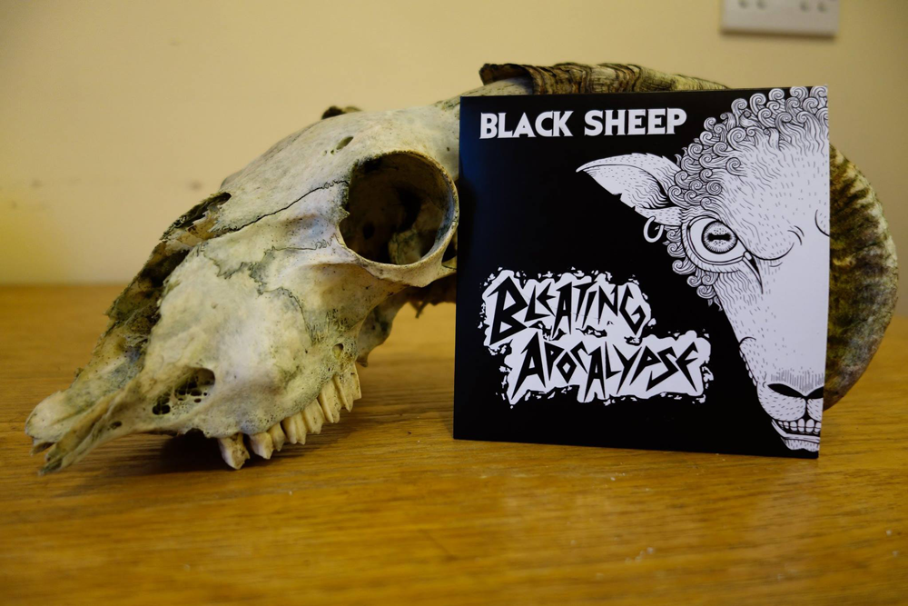 a picture of bleeting apocalypse album black sheep resting on a ram skull